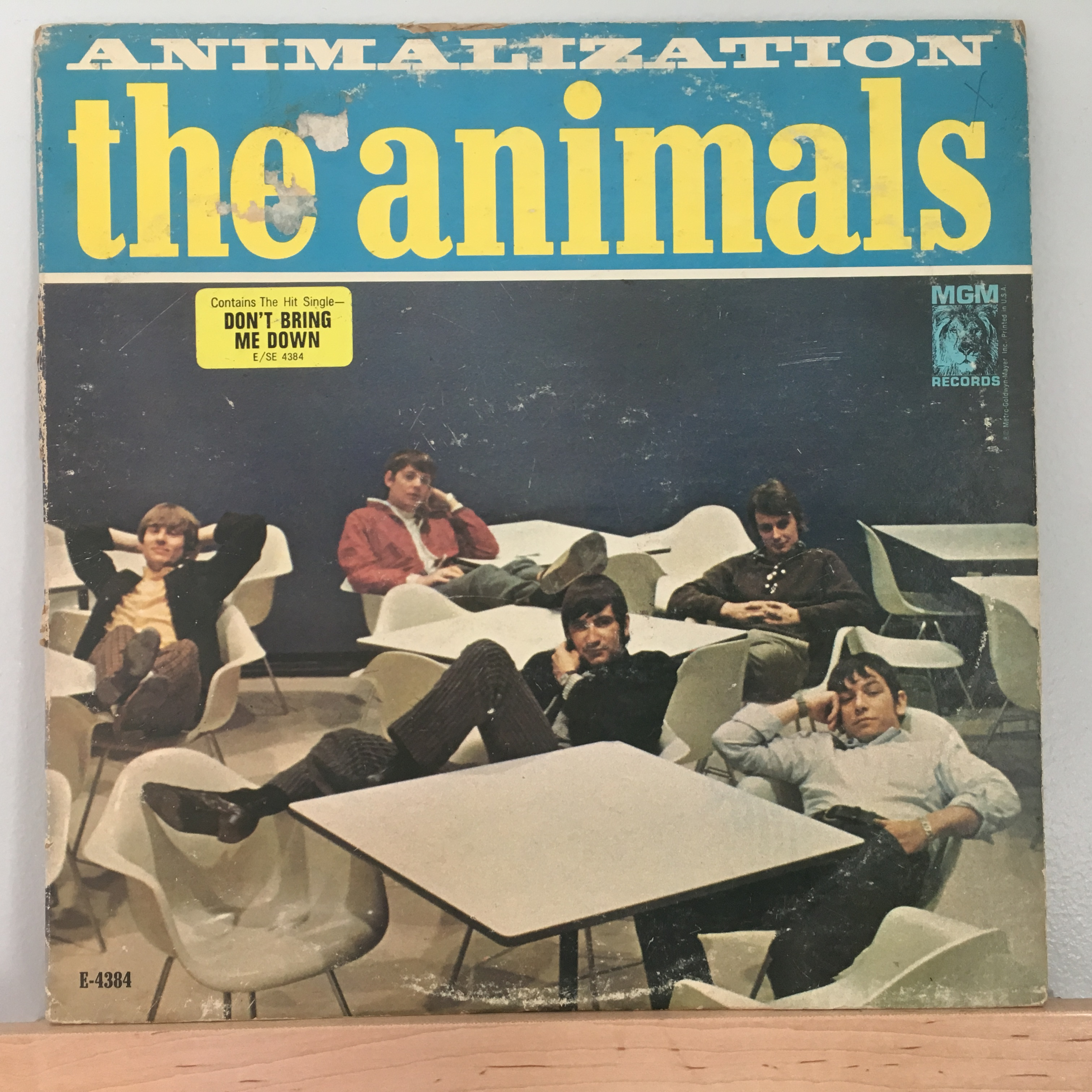 Animalization US Front Cover