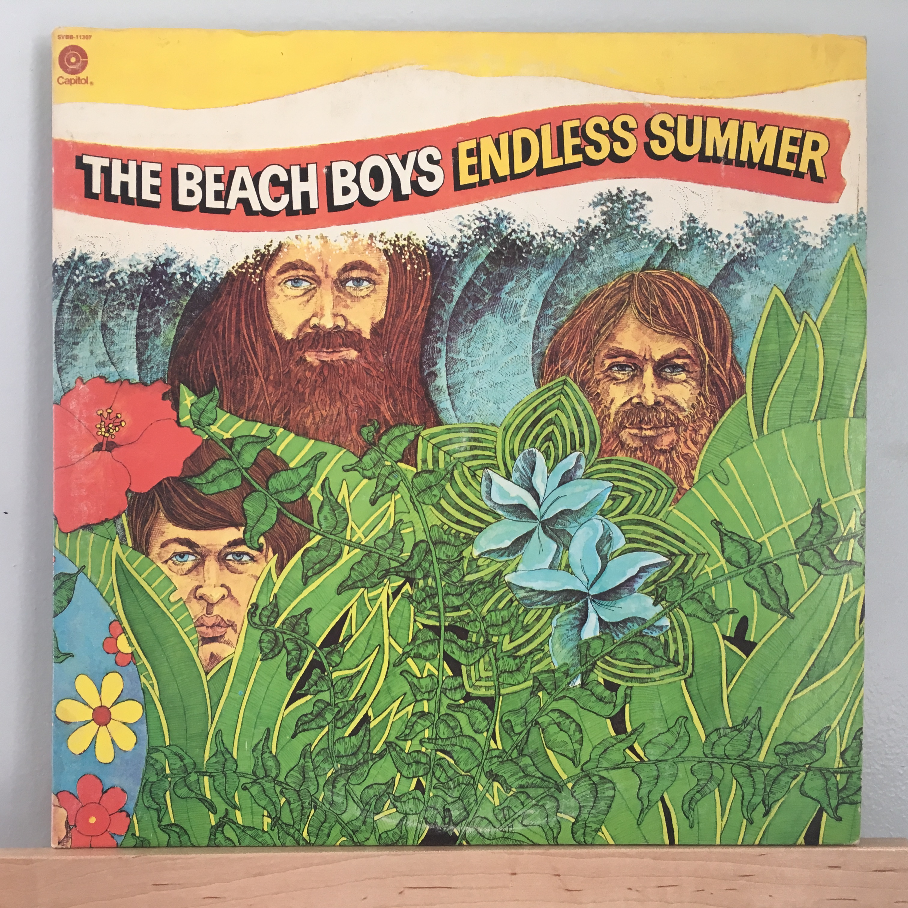 Endless Summer Front Cover