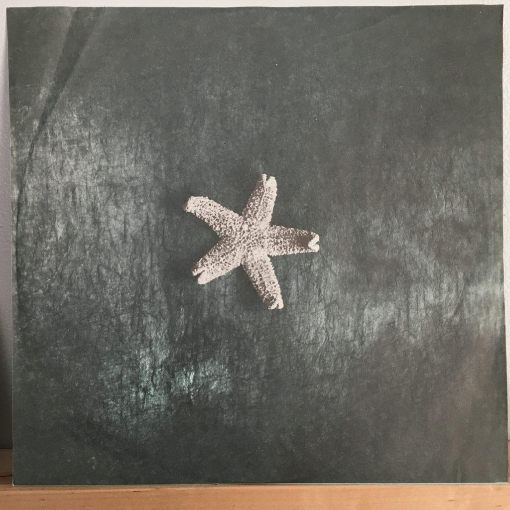 Starfish sleeve photo