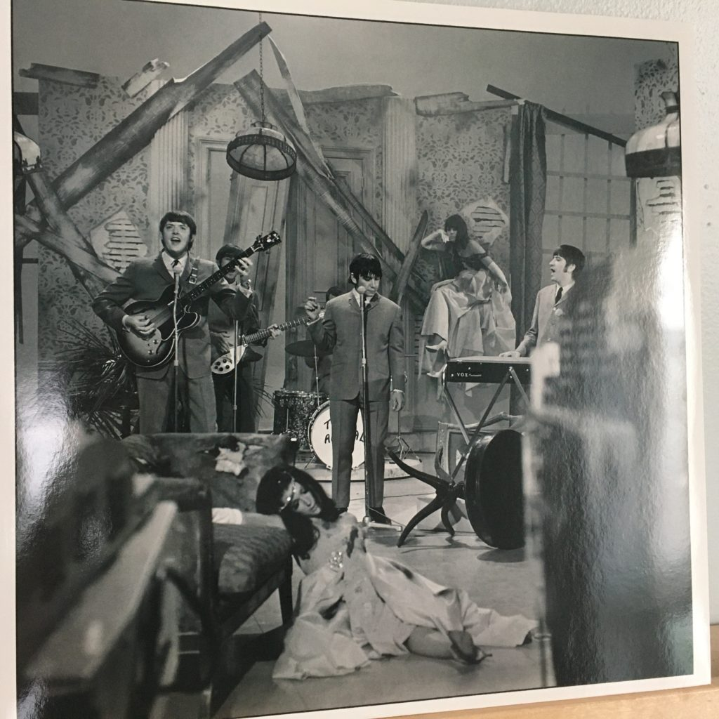 Animalisms picture sleeve