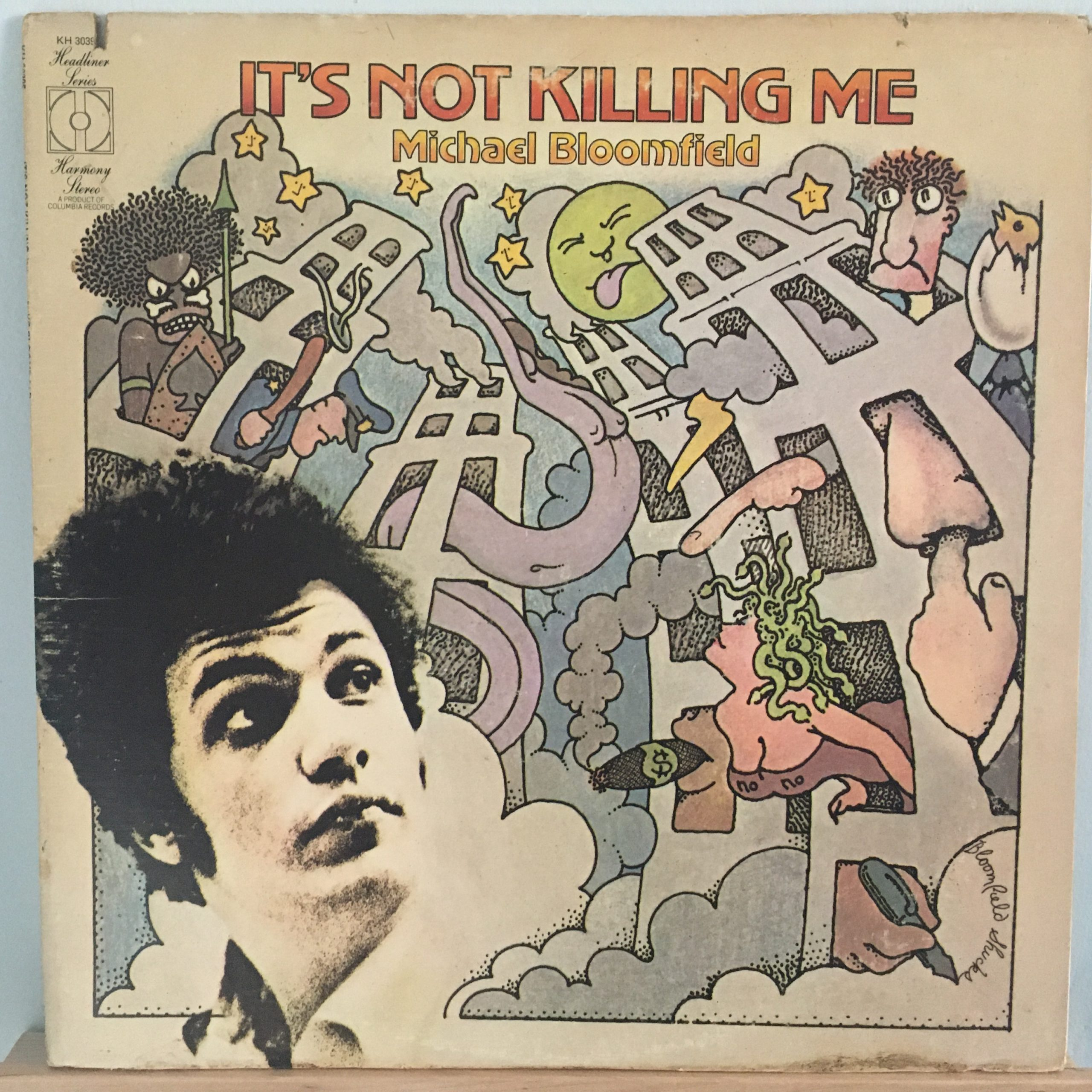 It's Not Killing Me front cover