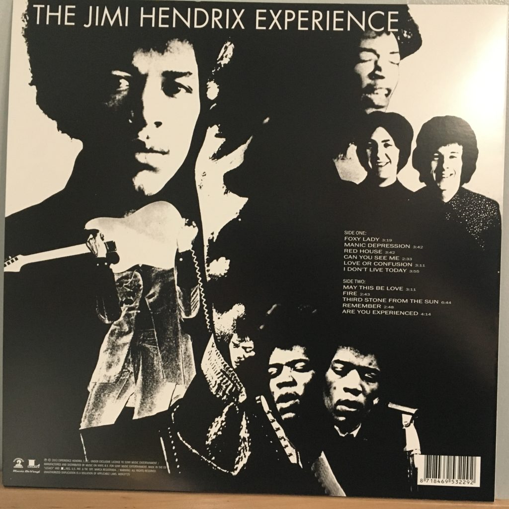 Are You Experienced back cover